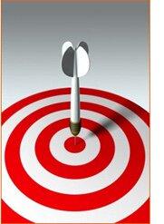 Search Engine Optimization: Most Successful Companies Neglect Search Engine Optimization by Greg Gaskill.